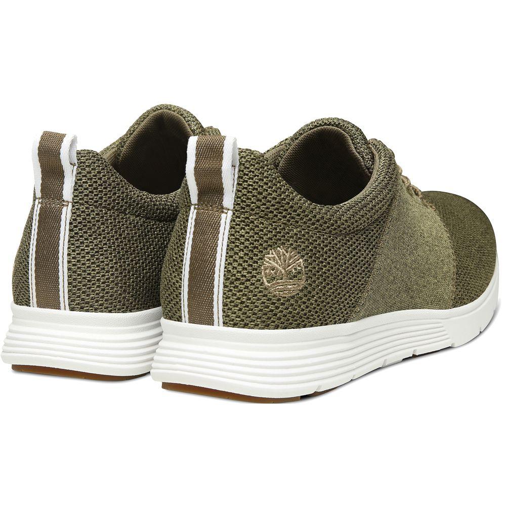 Timberland Killington FlexiKnit Ox Sneaker Herren olive