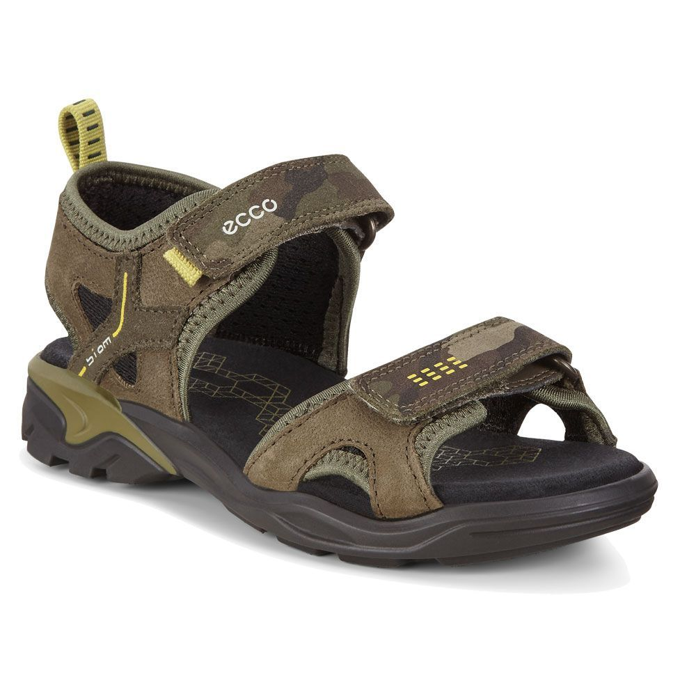 c42959990a Ecco - Biom Raft Sandals Kids grape leaf at Sport Bittl Shop