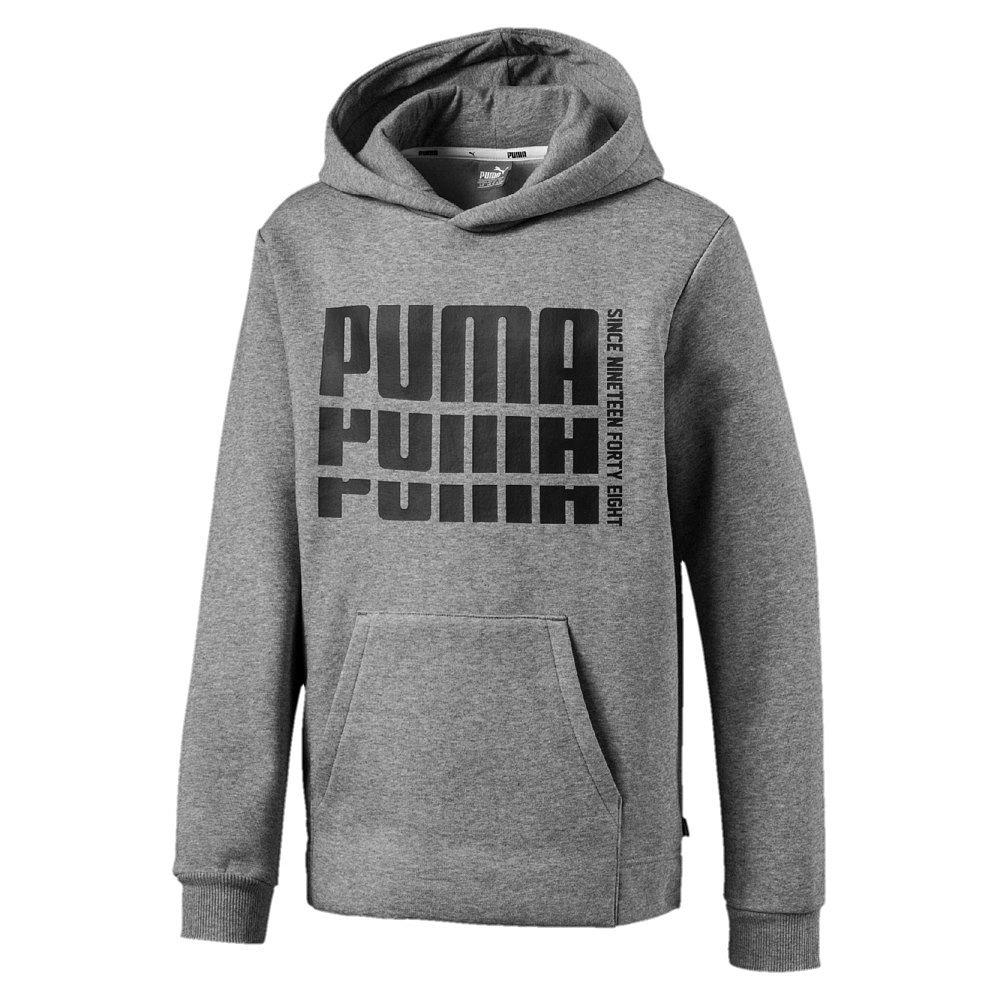 Puma Kapuzenpullover Essentials Logo FL, Kängurutasche