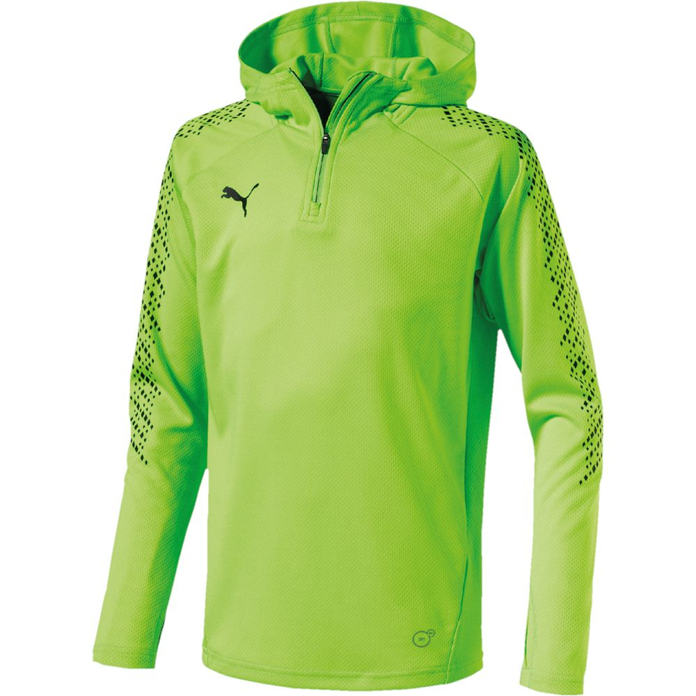 3d8d0d5f6ce Puma - IT evoTRG Hoodie Boys green gecko at Sport Bittl Shop
