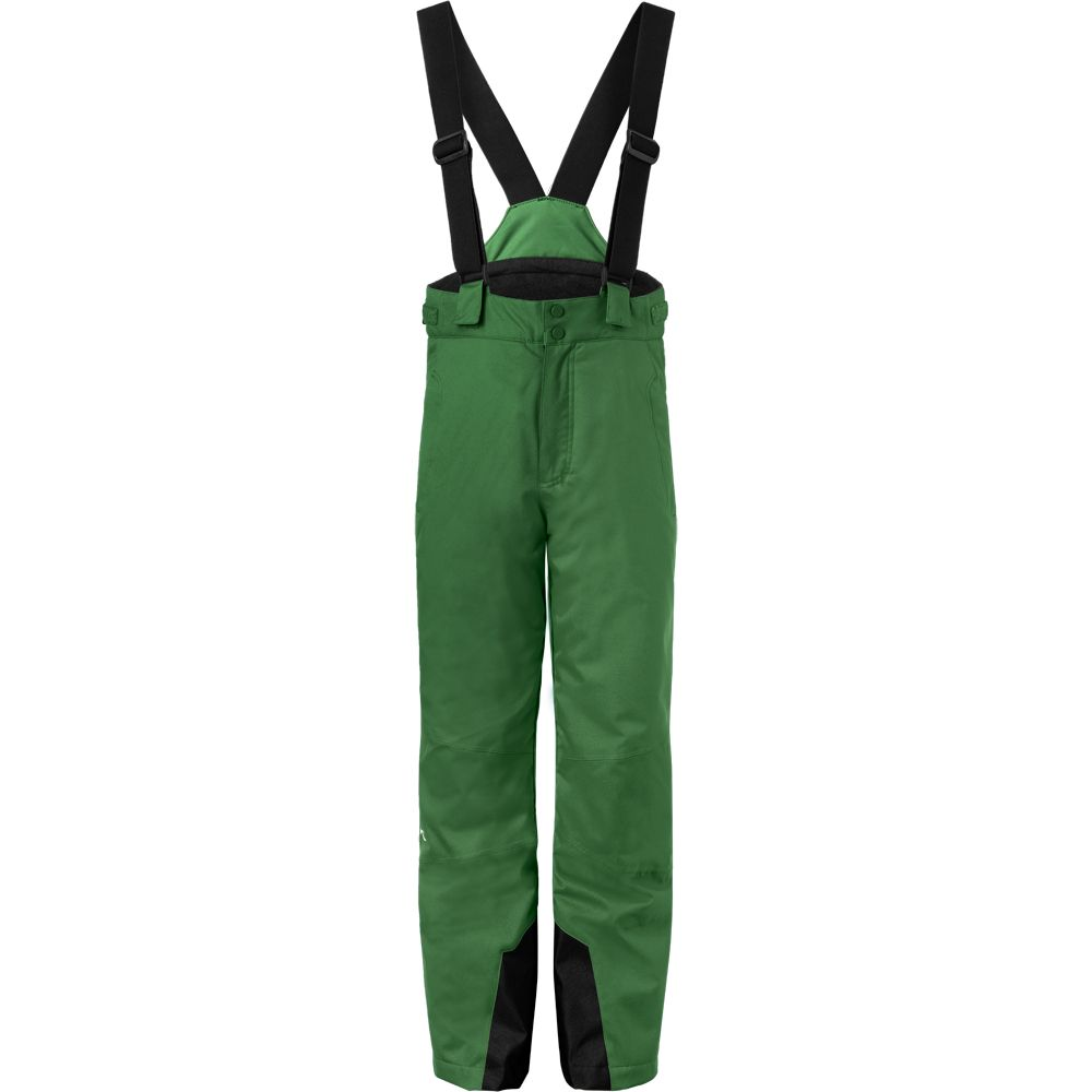 360129c82 KJUS - Vector Ski Pants Boys green leaf at Sport Bittl Shop