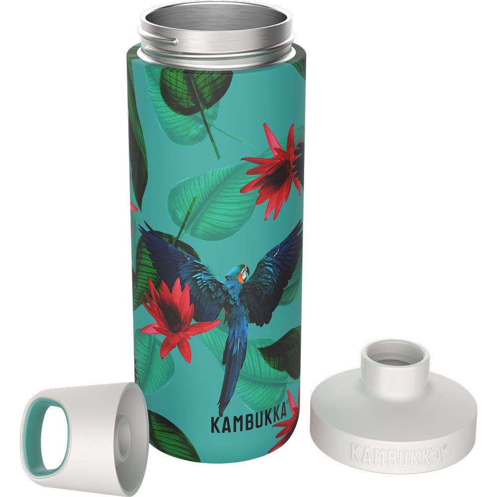 Reno Insulated 0,5L Drinking bottle parrots