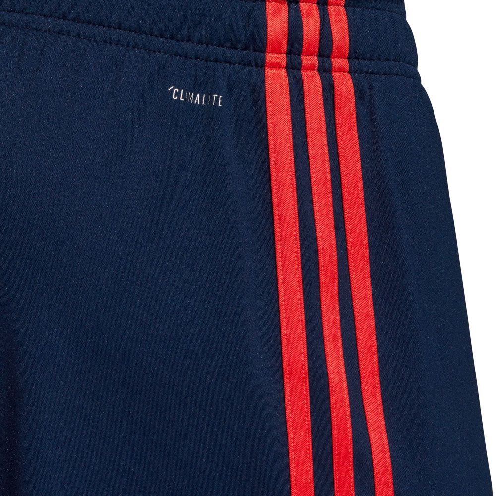 adidas FC Bayern CL Shorts 1920 Men collegiate navy bright red