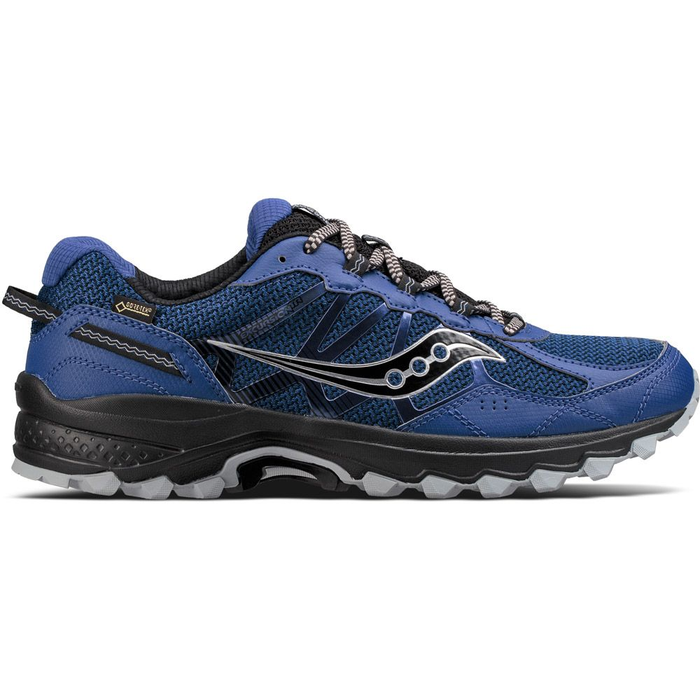Excursion TR11 GTX running shoes men