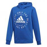 adidas - Sport ID Hoodie Jungen collegiate royal white