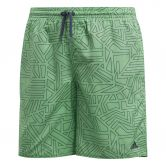 adidas - Graphic Schwimmshorts Jungen shock lime trace blue