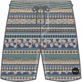 O'Neill - Thirst For Surf Shorts Jungen beige