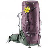Deuter - Aircontact Pro 65 + 15 SL Trekkingbackpack Women aubergine ivy