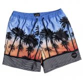 Quiksilver - Sunset Vibes Volley 17 Badeshorts Herren silver lake blue